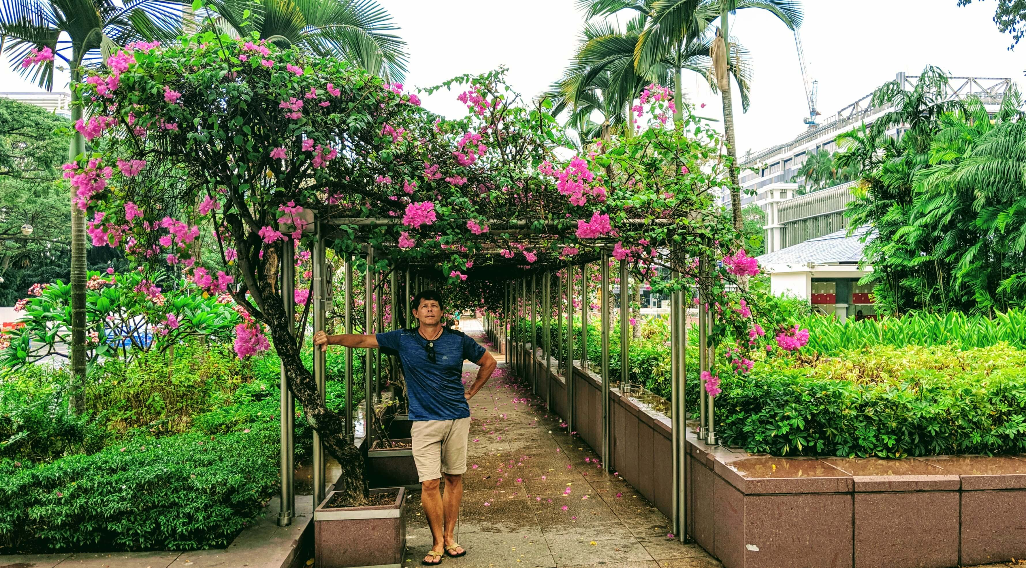Rob in front of the Presidential Palace and Gardens bougainvillea